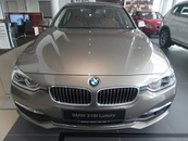 2016 BMW 3 SERIES 318i Luxury