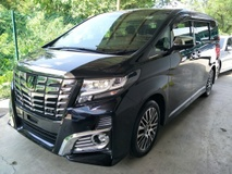 2016 TOYOTA ALPHARD 2.5 SC JBL HOME THEATER PRE CRASH 360 VIEW CAMERA