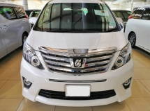2014 TOYOTA ALPHARD 2.4 SC With Full Leather Unreg 14