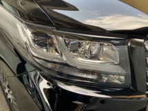 2017 TOYOTA ALPHARD 2.5 SC leather pilot seats rear monitor sunroof power boot 4 camera unregistered