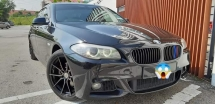 2010 BMW BMW OTHER 528i (CBU) 3.0 F10 TIPTOP CONDITION