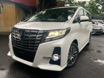 2016 TOYOTA ALPHARD 2.5 SC SUNROOF 3 MONITOR PILOT SEATS 3 POWER DOOR UNREG
