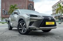 2018 LEXUS NX 300 8,000 KM Local Lexus Warranty